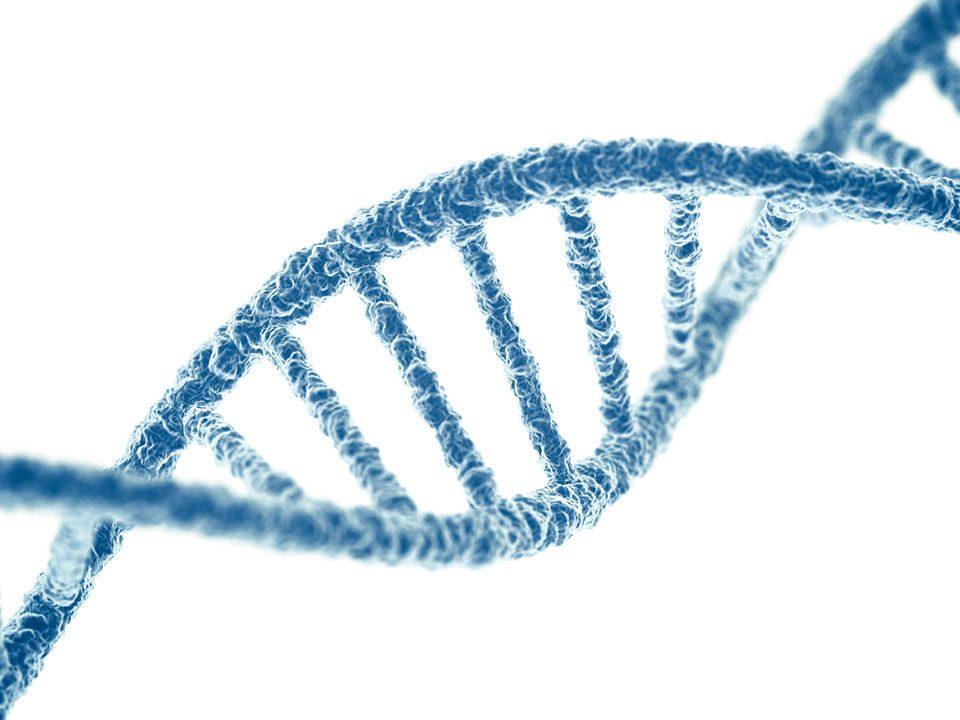 آزمایش cell free DNA