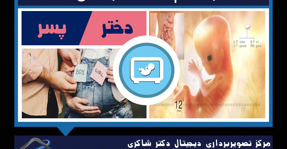 هفته دوازدهم بارداری و تعیین جنسیت